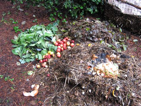 how to make a compost pile in your backyard how to make a compost pile in your backyard composting farmlet