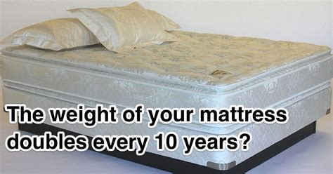 dust mites in pillows weight fact check mattresses in weight every 10 years