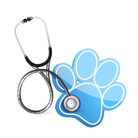 veterinary day jacksonville fl tinseltown
