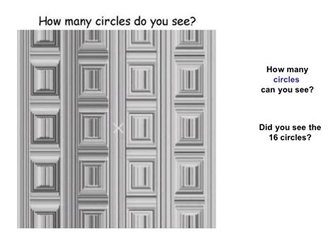 How To See How Many Search Something On Optical Illusions