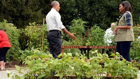 First Lady Michelle Obama Is Going All Out To Preserve Obama Vegetable Garden