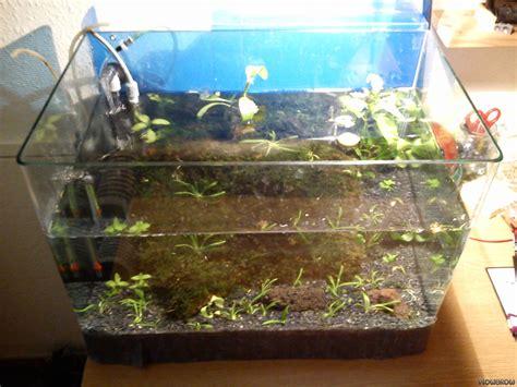 pumpe für wasserwechsel aquarium 1063 aquarium kies rechner zuhause image idee