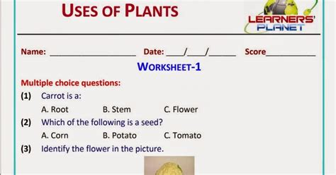 free printable evs worksheets for class 1 uses of plants grade 2 evs science worksheets test papers