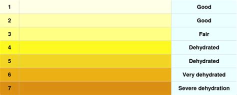 what color should your urine be what color of your urine says about problems in