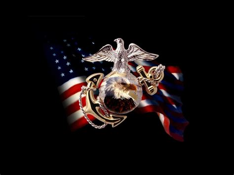 united states marine corps and government