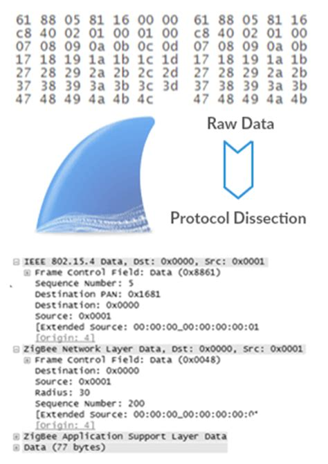 wireshark tutorial dissector how to compile your wireshark dissector sewio