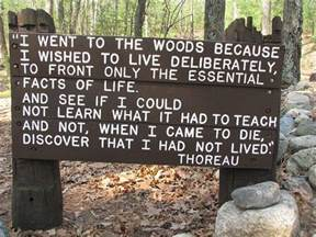 walden pond book summary if you spent the day with thoreau at walden pond by robert