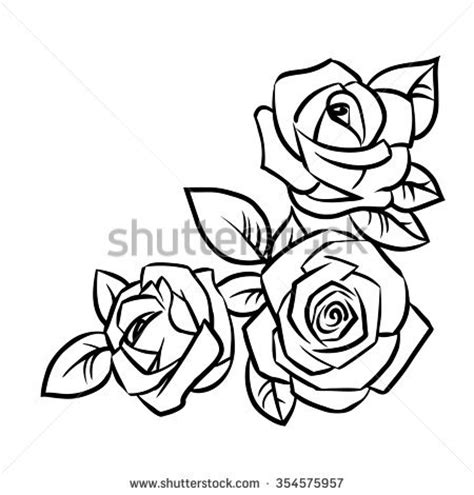 three roses leaves on white background stock vector