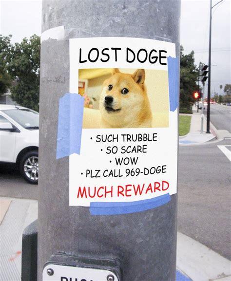 Lost Dog Meme - doge meme much wow dog funny shiba inu meme