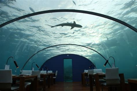 ithaa undersea restaurant prices ithaa restaurant picture of conrad maldives rangali