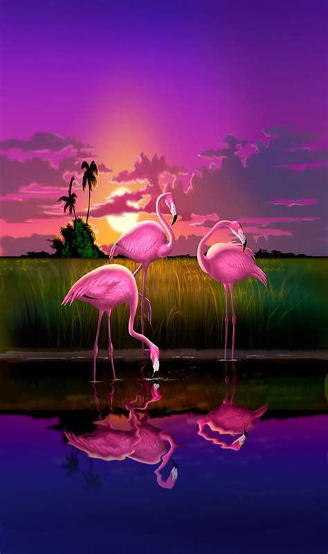 Flamingo Sunset iphone flamingoes flamingos tropical sunset