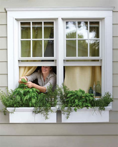 window box herb garden small space garden ideas martha stewart