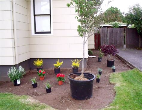 planter ideas for front of house planter ideas for front of house 45degreesdesign