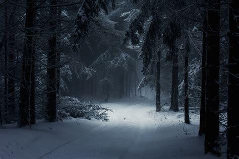 Car Wallpapers Desktops Forest by Winter Forest Desktop Wallpaper Modafinilsale