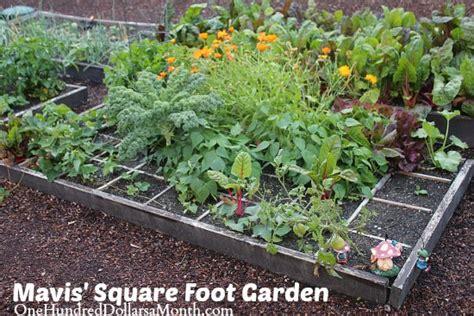 Mavis Square Foot Gardening Update One Hundred Dollars Square Foot Gardening Flowers