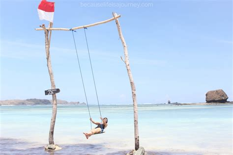 travel swings travel swings because life is a journey