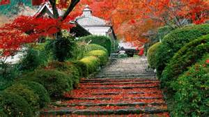 fall garden in japan garden kyoto autumn fall wallpaper 1920x1080