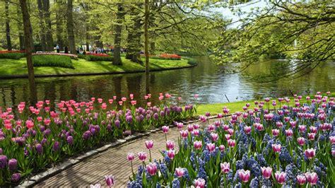 gambar pemandangan gambar pemandangan taman bunga