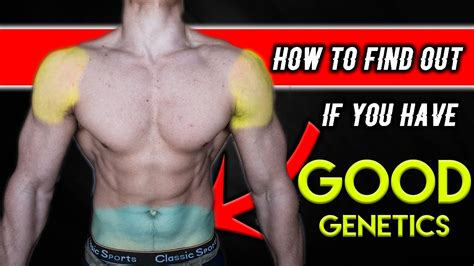 Will You A With Bad Genes by How To Tell If Your Genetics Are For Bodybuilding