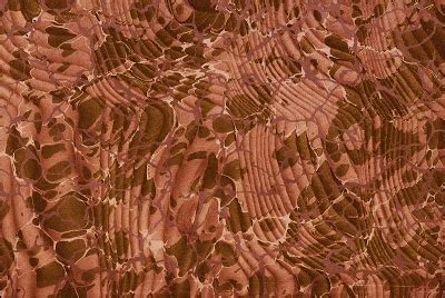 Berapa Shoo Olive mudbay images marbled papers 3