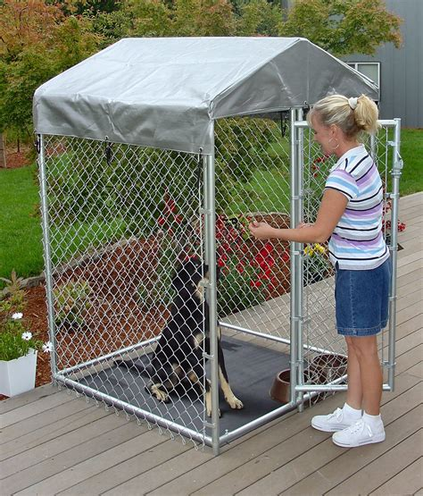 how do you kennel a choosing a kennel