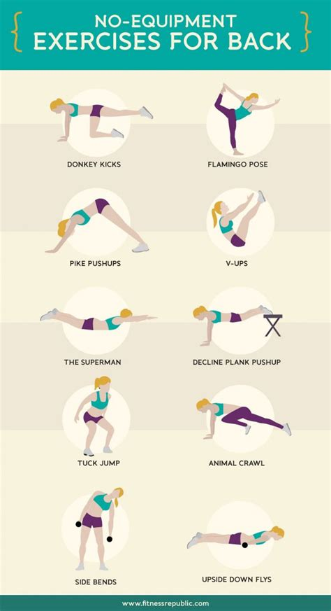 top 10 no equipment exercises for back infographic