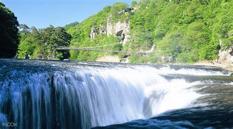 Of Ta Florida Mba by Tambara Lavender Park Fukiware Falls And Picking