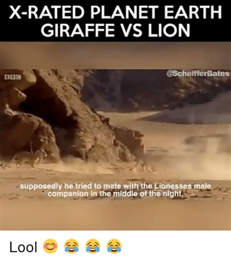 X Rated Memes - x rated planet earth giraffe vs lion supposedly he tried to mate with the lionesses male