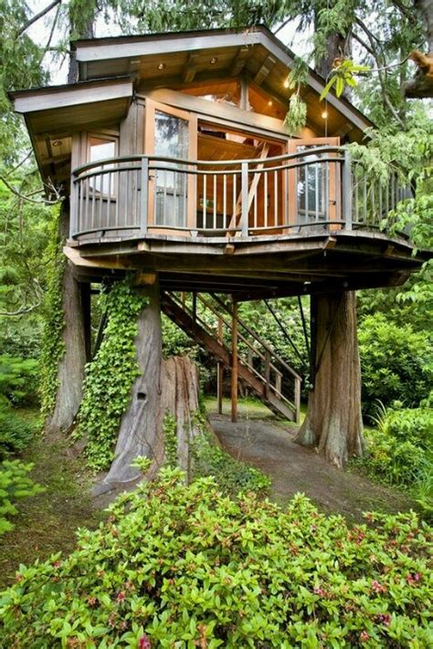 tree house guest cottage h o u s e