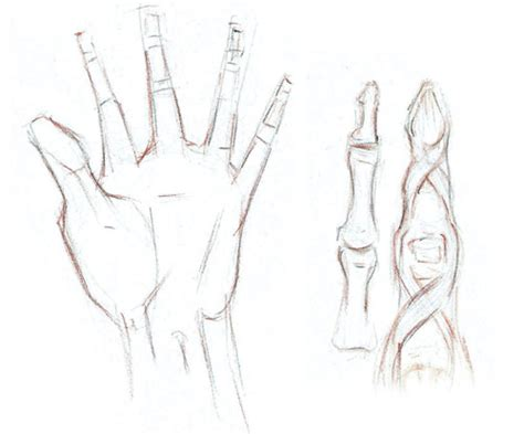 tutorial menggambar tangan tutorial cara menggambar tangan kopi keliling