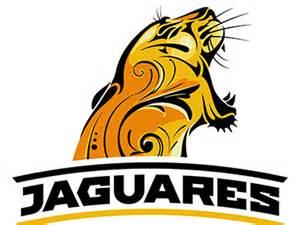 Los Jaguares Rugby365 Argentina S Los Jaguares Now Official