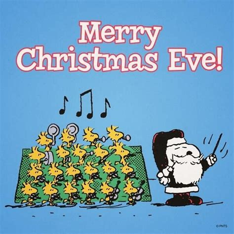 merry christmas tinkerbell quotes lol rofl com merry christmas eve snoopy pictures photos and images