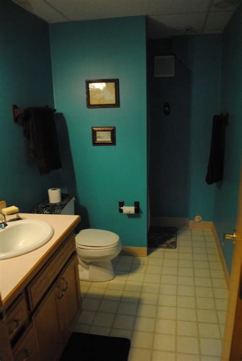 teal and brown bathroom for the home
