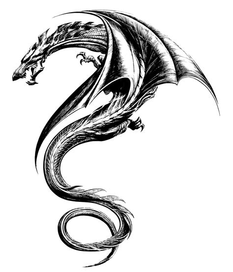 dragon tattoo drawing 60 awesome designs for