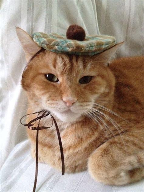 Cat Beret Hat st s day cat hat mini size plaid beret tam