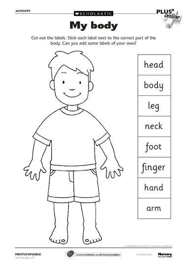 free printable worksheets preschool body parts body parts worksheet can use as a dictionary to label