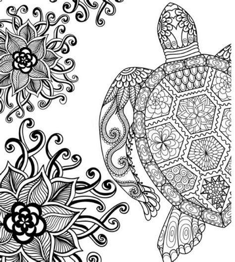 coloring pages for adults turtles the top 10 best blogs on adult colouring