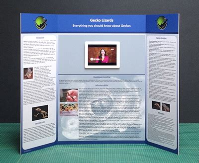 Science Poster Board Display Tri Fold Poster Board Template