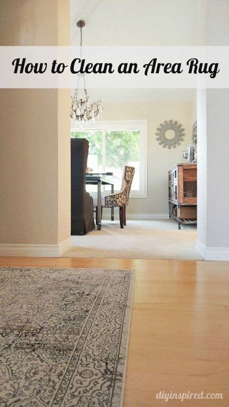 area rug cleaning tips 1000 images about cleaning household hints on stains hide thermostat and