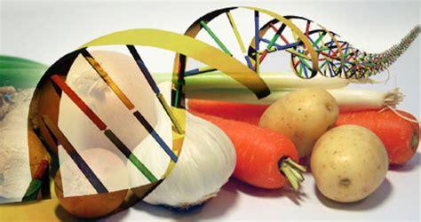 biotecnologia alimentare attraverso l oltre la lista dei cibi ogm