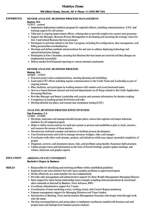 analyst business process resume sles velvet