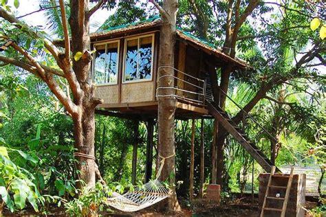 Simple Houseplans best tree house resorts near mumbai i lbb mumbai
