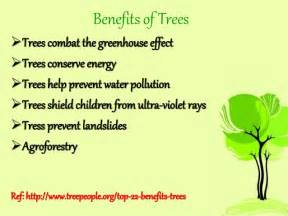 Poster on benefits of trees benefits of trees trees