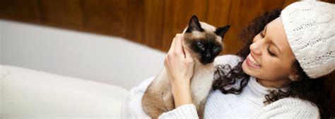 puppy patch elmira ny veterinarian in ithaca ny briar patch veterinary hospital