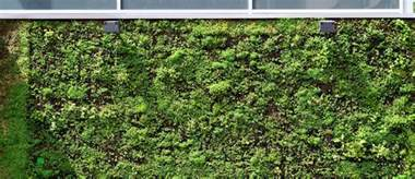 Luxury villa interior design together with green wall with plants