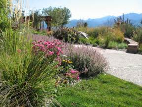 xeriscape landscape design ideas pinterest