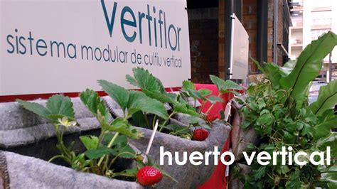 huerto urbano en casa huerto urbano en casa de fresas verduras y aromaticas