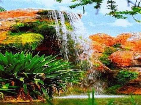 imagenes de paisajes con animales best 25 paisajes hermosos gratis ideas on pinterest