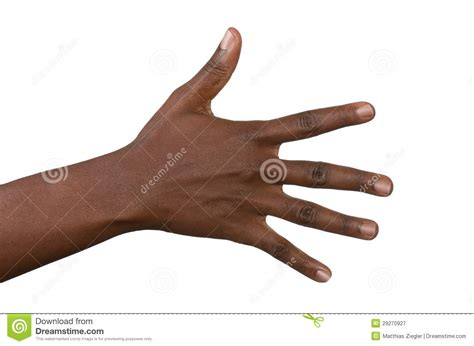 black hand open back of black woman s hand stock image image of