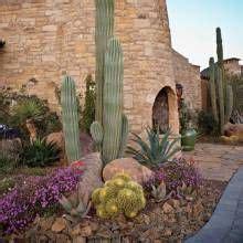 hillside lot embraces  desert phoenix home garden